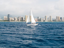 Sailboat in front of Waikiki. On a windy day Royalty Free Stock Images