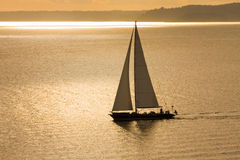 Sailboat in Golden Sunset Royalty Free Stock Photo
