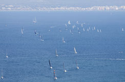 Sailboat group regatta race Royalty Free Stock Image