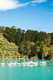 Sailboat in Harbor with clear water forest and blue sky. Sailboat in Harbor clear water forest and blue sky Royalty Free Stock Photo