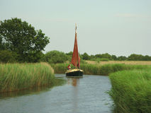 Sailboat Horsey Mere Norfolk Broads. A red sailed boat sailing amongst reeds on the Norfolk Broads on Horsey Mere Royalty Free Stock Photos
