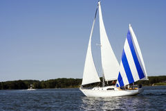 Sailboat on Lake. Sailboat with blue and white sails on lake with trees and blue sky Stock Photography