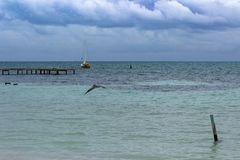 A sailboat lies at anchor off the coast of Caye Caulker, Belize. A sailboat lies at anchor off the coast of Caye Caulker, Belize as rain clouds gather over the royalty free stock photo
