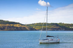 Sailboat with lowered sails. Is crossing the portuguese Tejo river stock images