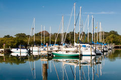 Sailboat Marina in Florida Royalty Free Stock Photography