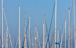 Sailboat masts in a marina Royalty Free Stock Photos