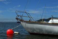 Sailboat on mooring buoy Royalty Free Stock Images