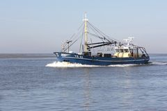 Sailboat Mossel στη Wadden θάλασσα Στοκ εικόνα με δικαίωμα ελεύθερης χρήσης