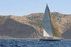 Sailboat Near Coast In The Ocean Royalty Free Stock Photo