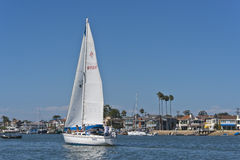 Sailboat, Newport Bay, Newport Beach California Stock Images