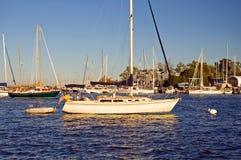 Sailboat no porto Fotografia de Stock Royalty Free