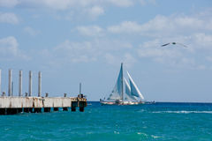 Sailboat on the Ocean. A sailboat sailing by just beyond the pier in Playa Del Carmen, Mexico stock images