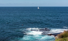 Sailboat in the ocean along the Bondi to Coogee coastal walk in Sydney, Australia Stock Images