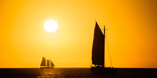 Sailboat in the ocean Royalty Free Stock Photo