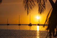 Sailboat and palm tree silhouette at sunset in the Caribbean ocean and a vivid yellow orange sky Royalty Free Stock Photos