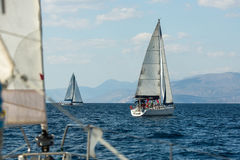Sailboat participate in sailing regatta Royalty Free Stock Images