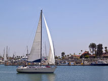 Sailboat in Point Loma Harbor. Stock Images