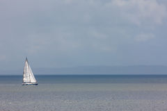 A sailboat in Puget Sound. A sailboat navigating Puget Sound Royalty Free Stock Photo