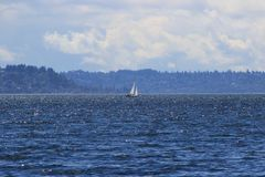 Sailboat on Puget Sound. A sailboat on the Puget Sound outside Seattle Royalty Free Stock Image