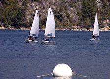 Sailboat race. In a lake in the mountains Royalty Free Stock Images