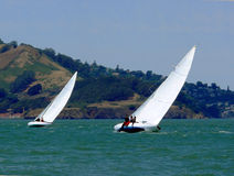 Sailboat race. Fierce competition between two J24 sailboats in San Francisco Bay on a beautiful and windy summer weekend Stock Image