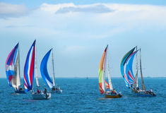 Sailboat race with colorful sails on the sailboats Royalty Free Stock Photo