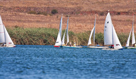 Sailboat race on a dam Royalty Free Stock Images