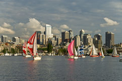 Sailboat race in Seattle  Royalty Free Stock Photos