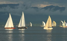 Sailboat race by sunset Stock Photo