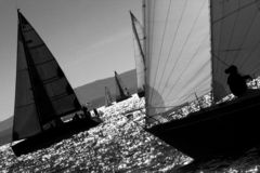 Sailboat Racing. Sailboat race with multiple boats in backlight in a sunny day - strong wind during Barcolana regatta - converted in black and white for more Royalty Free Stock Image