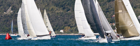 Sailboat Racing. Sailboat race with multiple boats and hills in the background in a sunny day - strong wind during Barcolana regatta - (Trieste, Italy 2007 stock image