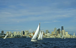 Sailboat Racing Downtown Stock Photography