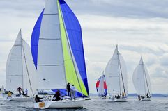 Sailboat Racing on Puget Sound, Seattle, Washington State. Salinig Races in the Pacific Northwest USA Stock Photos