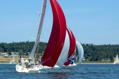 Sailboat Racing on Puget Sound, Whidbey Island, Washington State,. Salinig Races in the Pacific Northwest USA Stock Photo