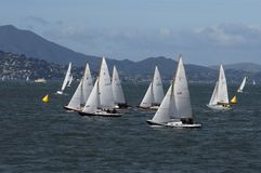Sailboat Racing on San Francisco Bay Stock Photo