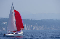 Sailboat and red spinnaker in Bandol, France Royalty Free Stock Photo