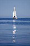Sailboat Reflection Stock Image