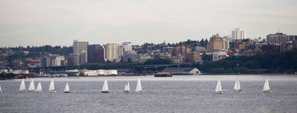 Sailboat Regatta Commencement Bay Puget Sound Dpwntown City Taco Royalty Free Stock Photography