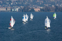 Sailboat regatta race with colorful spinnaker sails at lake Luga Royalty Free Stock Photo