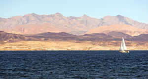 Sailboat Rides Wind Lake Mead Recreation Area Boaters Sail Royalty Free Stock Photography