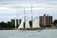 Sailboat in river during fall between USA and Canada. View from Detroit royalty free stock image