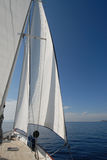 Sailboat on sail Royalty Free Stock Photo