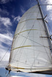 Sailboat Sail. A full white sail of a sailboat blows in the wind Royalty Free Stock Image