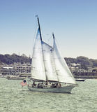 Sailboat. Sailing along shore in harbor Stock Photography
