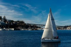 Sailboat sailing on Lake Union on a beautiful day. George Washington Memorial in the background Royalty Free Stock Image