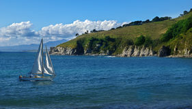 Sailboat sailing in the morning Royalty Free Stock Photography