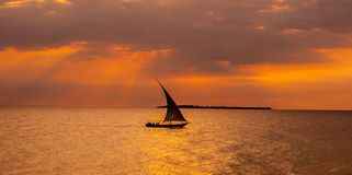 Sailboat sailing in the sunset. On Zanzibar Royalty Free Stock Images