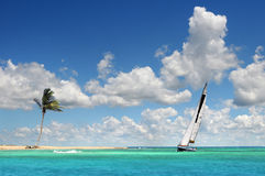 Sailboat Sailing on Tropical Seas. Sailboat sailing on the clear waters of tropical paradise Royalty Free Stock Image