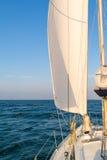 Sailboat sailing on Wadden Sea, Netherlands Royalty Free Stock Image