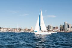 Sailboat in San Diego Bay. A sailboat in San Diego bay with the downtown skyline in the background stock photos